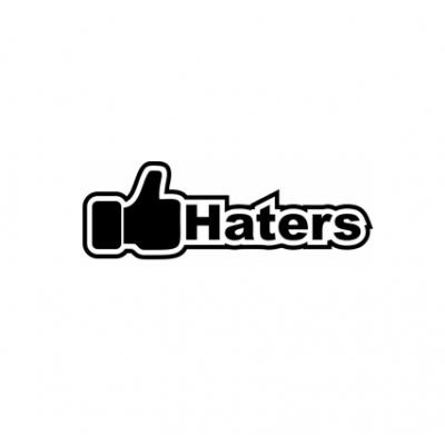 Sticker I Like Haters